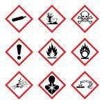 GHS 9 New Hazard Pictogram